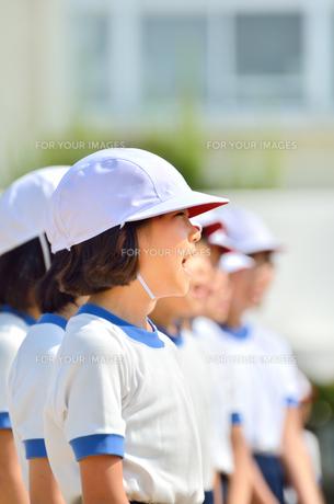 運動会で整列する小学生の女の子(体操服、紅白帽)の写真素材 [FYI00621289]