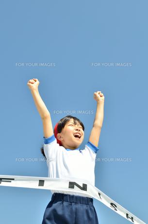 運動会で走る小学生女の子(ゴールテープ)の写真素材 [FYI00621339]