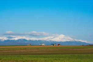 冠雪の山と秋の農作業の写真素材 [FYI00622528]