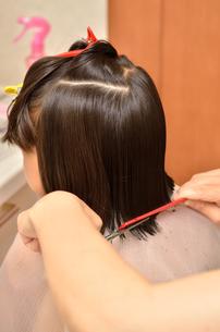 髪を切る女の子の写真素材 [FYI00623073]