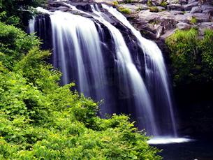 黄金の滝の写真素材 [FYI00624716]