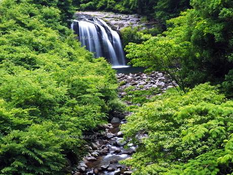 黄金の滝の写真素材 [FYI00624718]