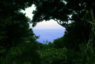 番所庭園の景色の写真素材 [FYI00625352]