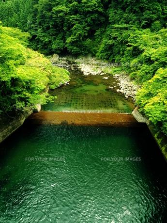 夏の堰堤の写真素材 [FYI00625721]