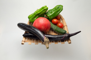 新鮮夏野菜の写真素材 [FYI00625898]