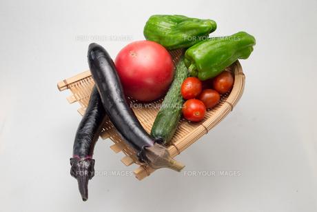 新鮮夏野菜の写真素材 [FYI00625899]