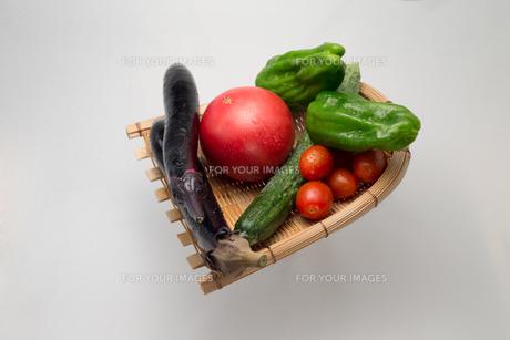 新鮮夏野菜の写真素材 [FYI00625900]