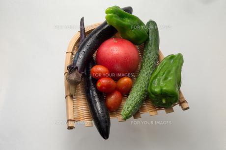 新鮮夏野菜の写真素材 [FYI00625901]