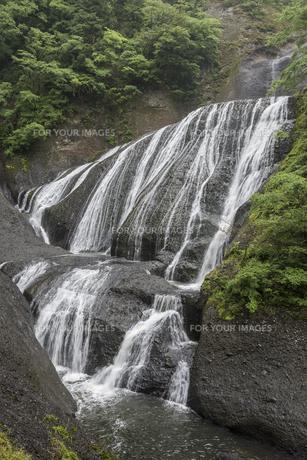 新緑の袋田の滝の写真素材 [FYI00625957]