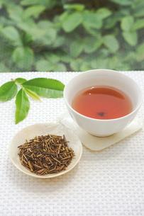 焙じ茶の写真素材 [FYI00626182]