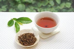 焙じ茶の写真素材 [FYI00626183]