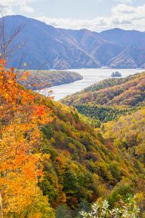 磐梯吾妻レークラインから見る秋元湖の写真素材 [FYI00626430]