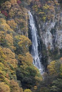 錦秋の澗満滝の写真素材 [FYI00626937]