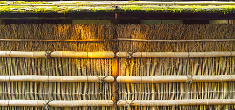 竹のフェンスの写真素材 [FYI00627031]