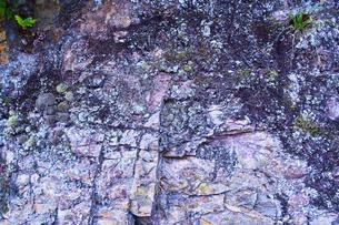 崖の断面の写真素材 [FYI00627046]