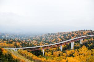 北海道・秋の三国峠の写真素材 [FYI00627209]