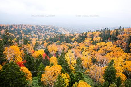 北海道・秋の三国峠の写真素材 [FYI00627214]