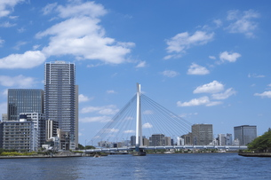 五月晴れの隅田川中央大橋の写真素材 [FYI00627261]