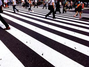 新宿散歩5の写真素材 [FYI00627815]