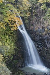秋の妙高高原不動滝の写真素材 [FYI00627917]
