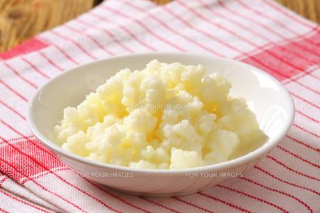 Milk kefir grains (Tibetan mushroom)の素材 [FYI00631936]
