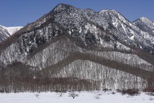 冬の戦場ヶ原から見た奥日光の里山の写真素材 [FYI00632369]