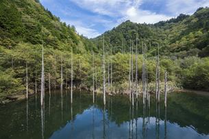 色づく自然湖の写真素材 [FYI00632572]