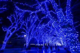 公園通リ青の洞窟SHIBUYAの写真素材 [FYI00633082]