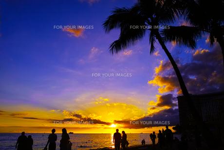 ハワイ ワイキキビーチからの夕日の写真素材 [FYI00633114]