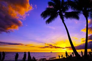 ハワイ ワイキキビーチからの夕日の写真素材 [FYI00633115]