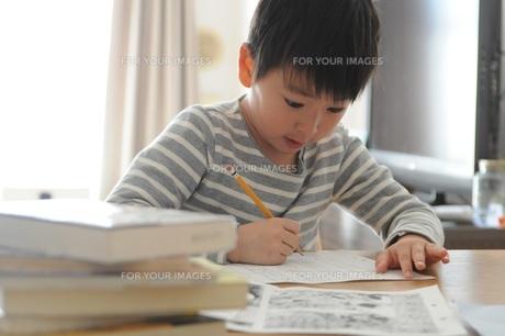 勉強する小学生の写真素材 [FYI00633381]