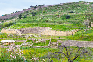 ancient greek theater and agora in Morgantinaの写真素材 [FYI00633738]