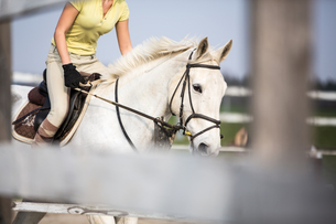Young woman show jumping with horseの写真素材 [FYI00634547]