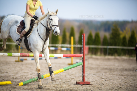 Young woman show jumping with horseの写真素材 [FYI00634552]