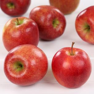 fruits_vegetablesの素材 [FYI00635813]