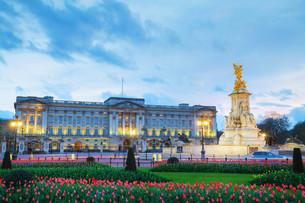 Buckingham palace in London, Great Britainの素材 [FYI00636351]