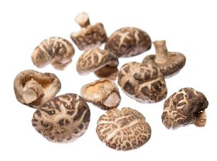 Dried shiitake mushroomsの写真素材 [FYI00636490]