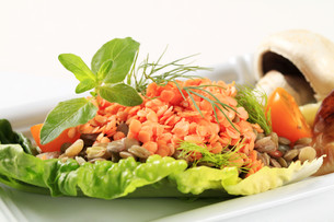 Vegetarian dishの写真素材 [FYI00636532]