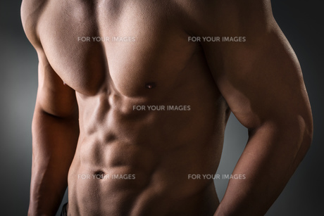 Abdominal and pectoral muscleの写真素材 [FYI00638264]