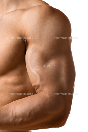 Biceps muscle of young manの写真素材 [FYI00638294]
