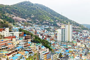 Gamcheon Culture Village in South Korea.の写真素材 [FYI00638512]