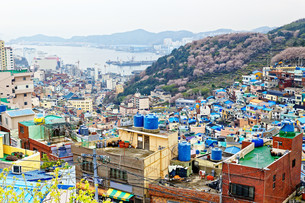Gamcheon Culture Village in South Korea.の写真素材 [FYI00638518]