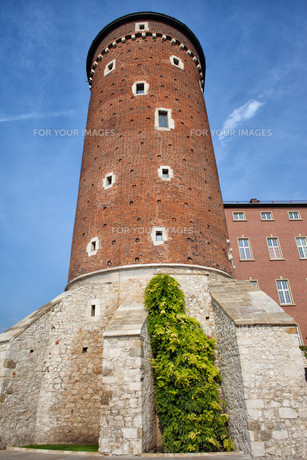 Sandomierska Tower of Wawel Castle in Krakowの写真素材 [FYI00638795]
