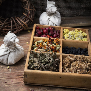 medicinal herbの写真素材 [FYI00639449]