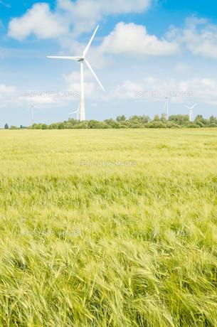Summer landscape with wind generatorsの写真素材 [FYI00640007]