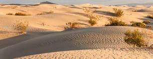 Death Valley Desertの写真素材 [FYI00640547]