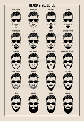 beard style guide posterの写真素材 [FYI00641236]