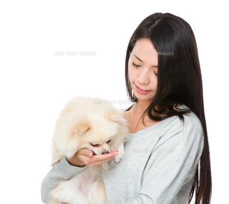 Woman feed her pomeranian dogの写真素材 [FYI00641658]