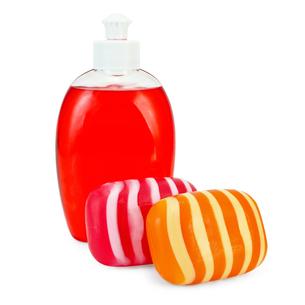 Soap liquid and solidの写真素材 [FYI00641945]