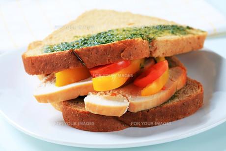 Turkey sandwichの写真素材 [FYI00642615]